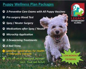 Puppy Wellness Plan
